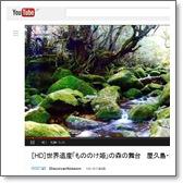 [HD]世界遺産「もののけ姫」の森の舞台.jpg