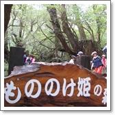 もののけ姫の森.jpg