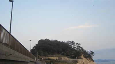 kimiuso_0003.JPG