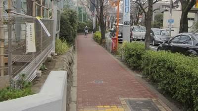 kimiuso_2005.JPG